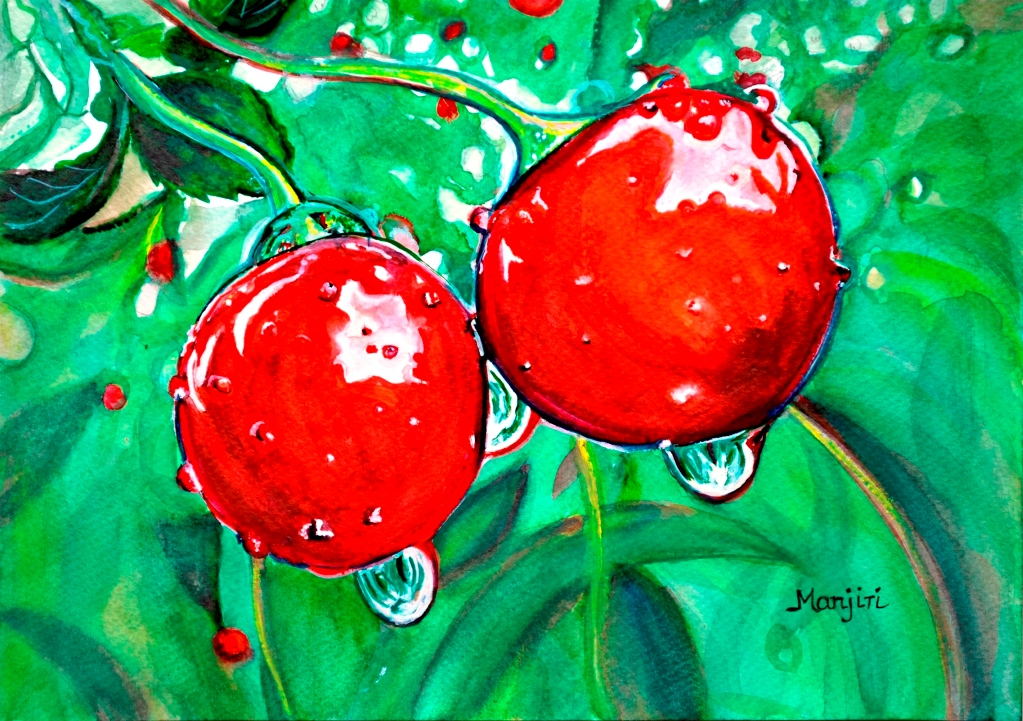 Red ripe Cherry in Orchard watercolor painting